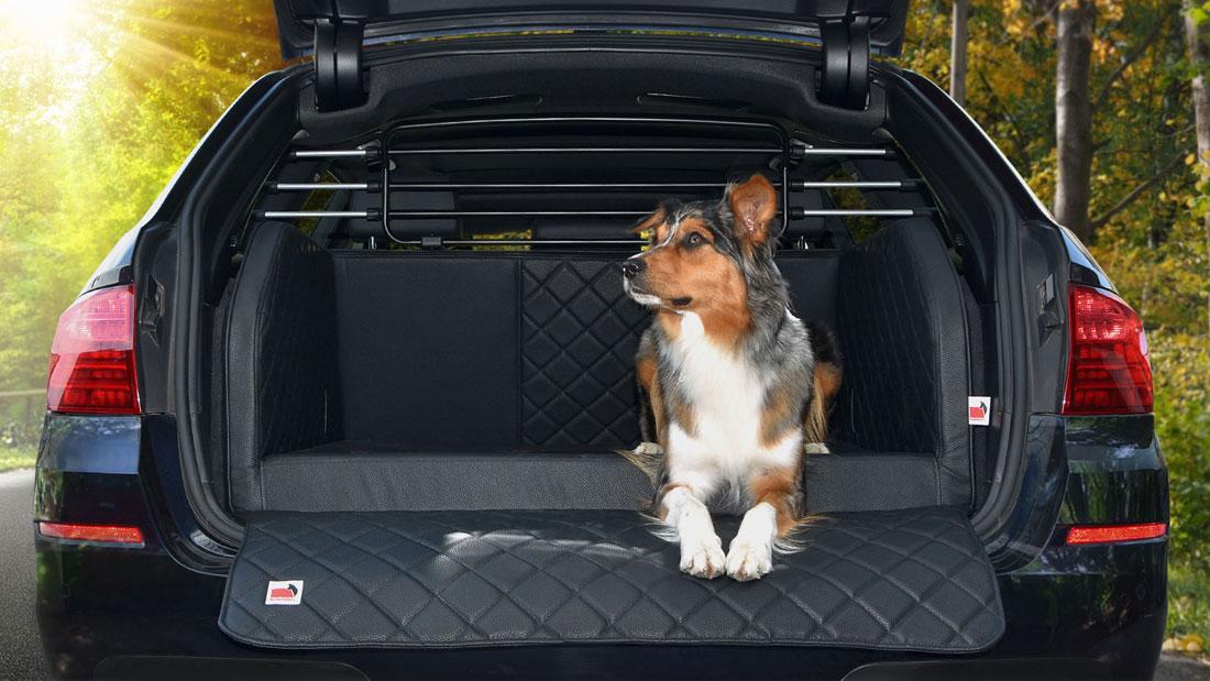 Delux Auto Hundegitter
