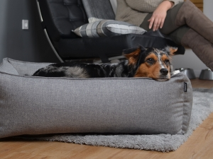 Hundebett Dreamcollection Softline 130x110 cm silber